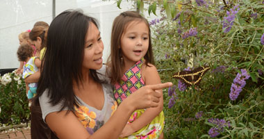 Mom and daughter exploring the Butterfly Atrium at Hershey Gardens