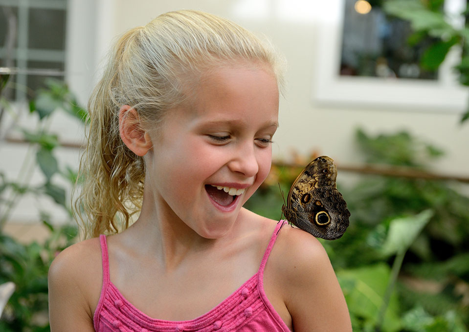 Girl looking at a butterfly at Hershey Gardens